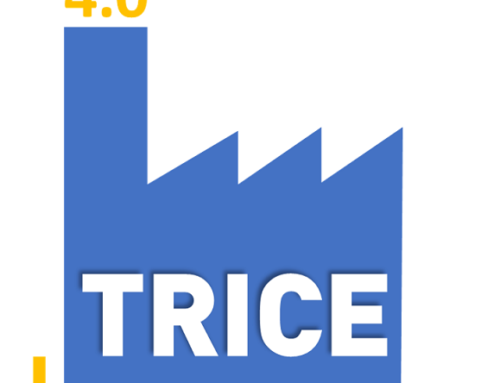 TRICE project